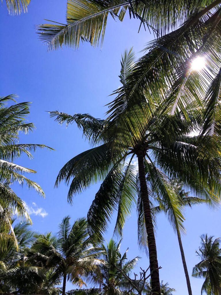 #lagomtravel: Bali Guide